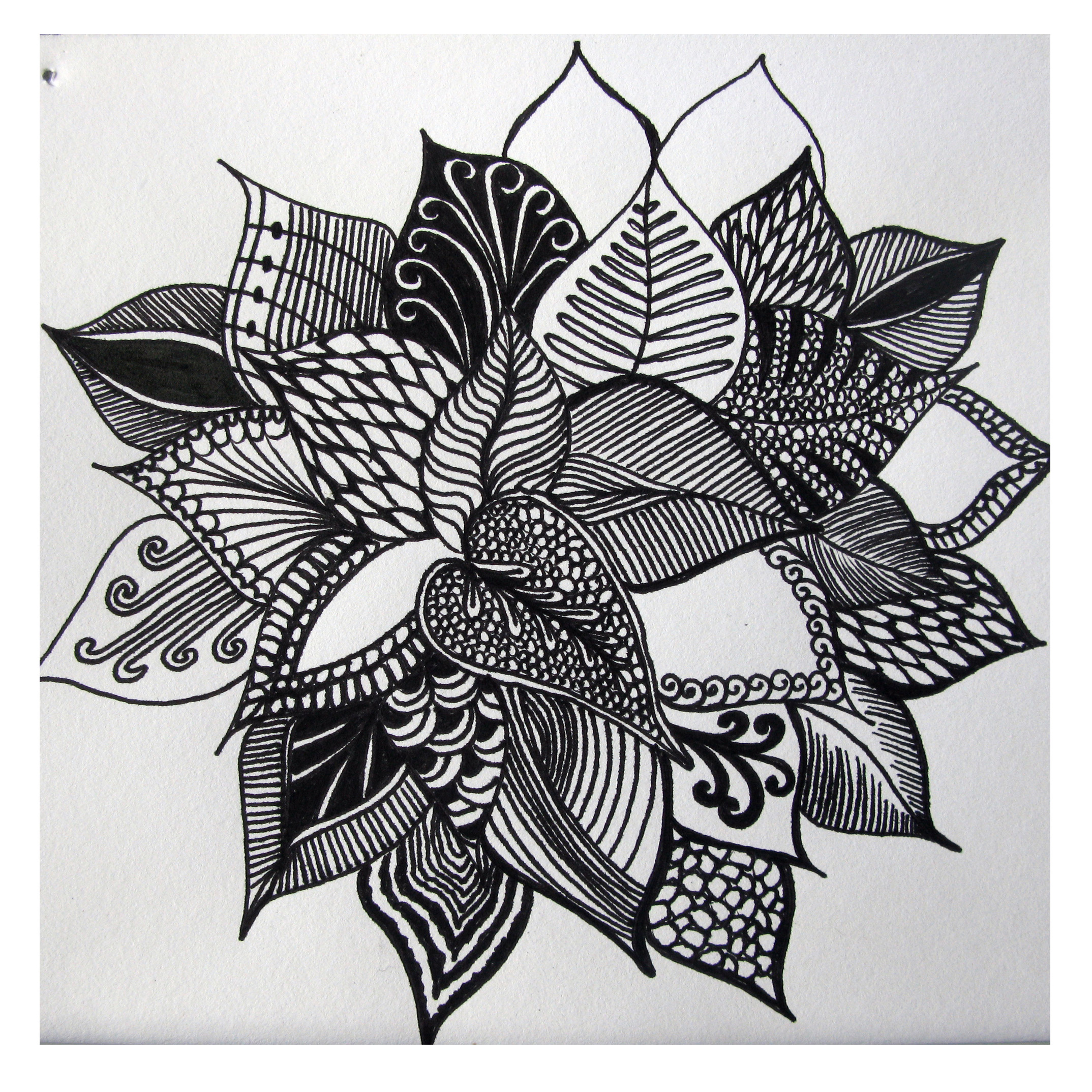 abstract flower drawing Art